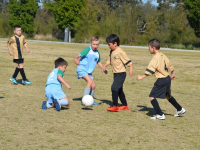 Miniroos Gala Day - Sat 15th August 2015